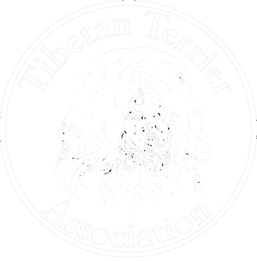 TTArevised - w trans